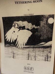 Tethering Moon, Valli Poole, 2013